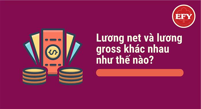 Khái niệm về lương Gross, lương Net là gì? Cách tính lương Gross và lương Net như thế nào?